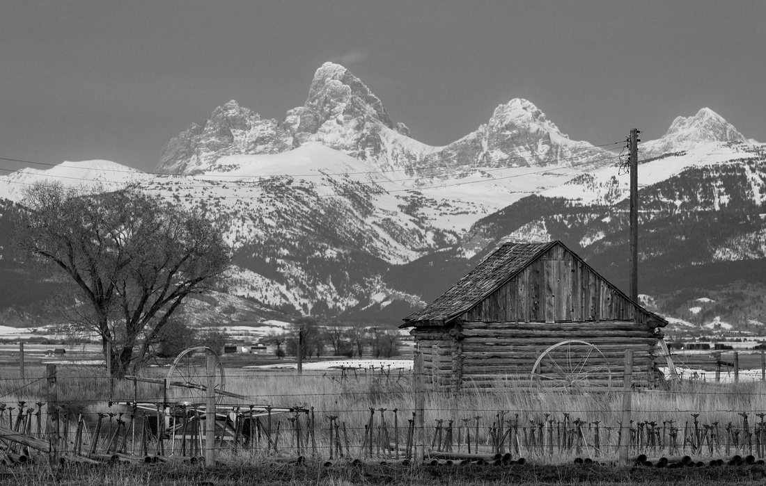 Teton Valley Shed by Moonlight